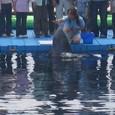 イルカ体験4