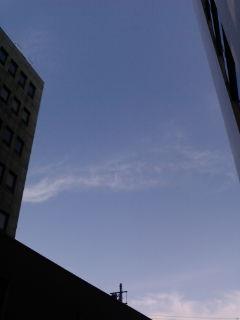 今日の空2