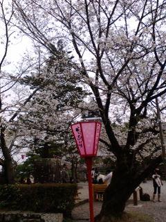 高知城にて